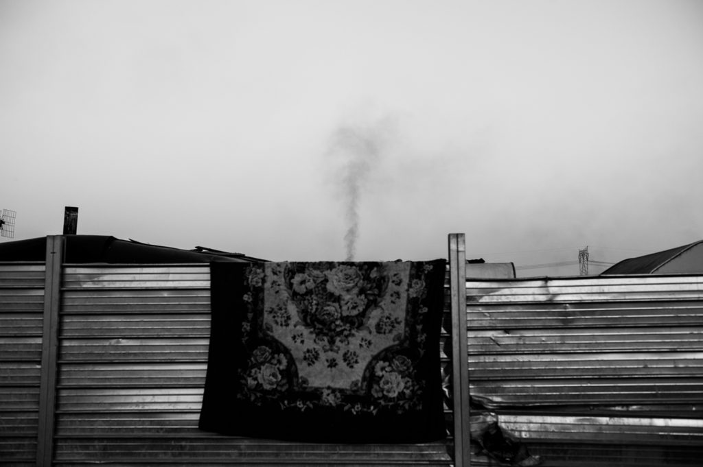 Stefano Schirato presenta <br> TERRA MALA Living with Poison